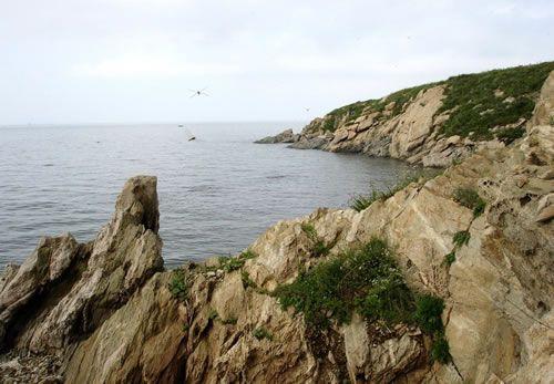 旅游景点 辽宁 葫芦岛 > 龙湾海滨   龙湾海滨美图 攻略 葫芦岛