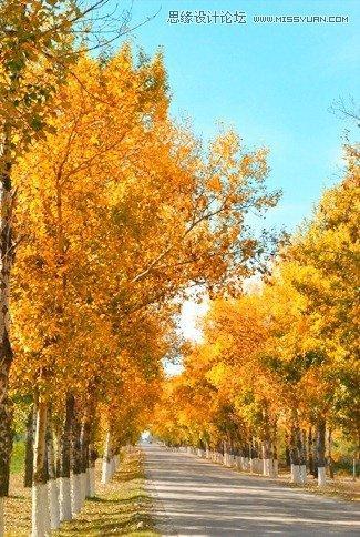 ps照片特效-调出风景童话秋季黄色调